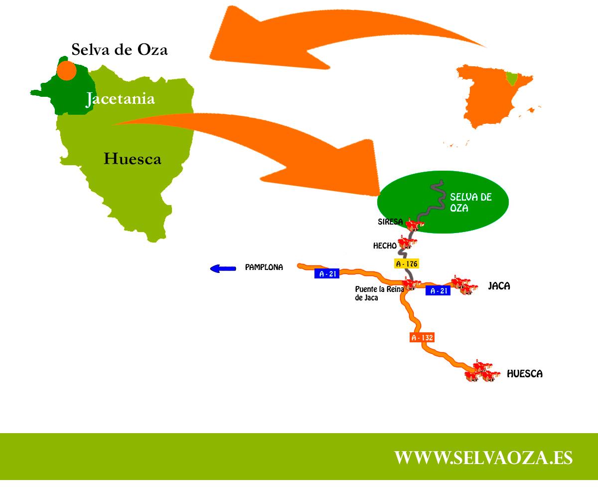 Como llegar a la Selva de Oza